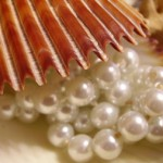 pearls in shell2